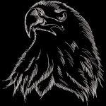 kralmami kullanıcısının profil fotoğrafı